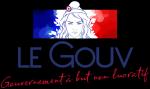 le Gouv,nikonoff,chouard,fabrice grimal,gouvernement à but non lucratif,vers la revolution,macron,futur crise